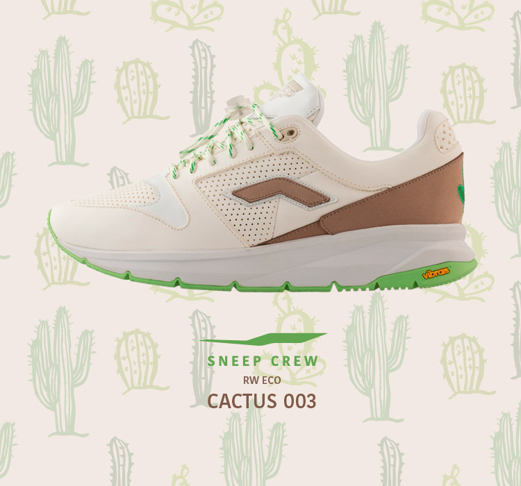 Cactus 003